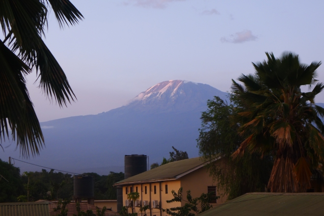 View of the top from our hotel in Moshi.